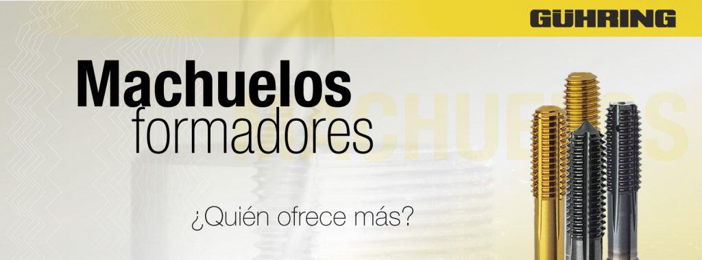 guhringmexicanasadecv@conexioncanacintra.mx